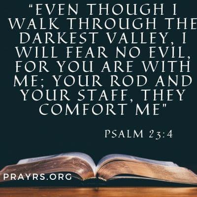 Bible Verse Against Evil Plans